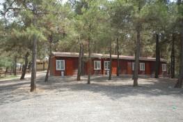 معسكر الكشاف المنشأ من قبل إدارة بلدية ناحية باشاقشهير