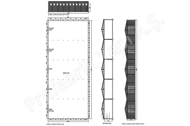منشأ حديد الصلب 1000 م2 الأول